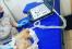 Апробация ветеринарного УЗИ аппарата G30vet-1